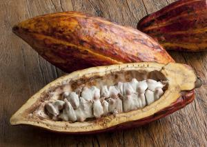Use cocoa butter to fix harsh itching burning and unwanted dryness a after shaving