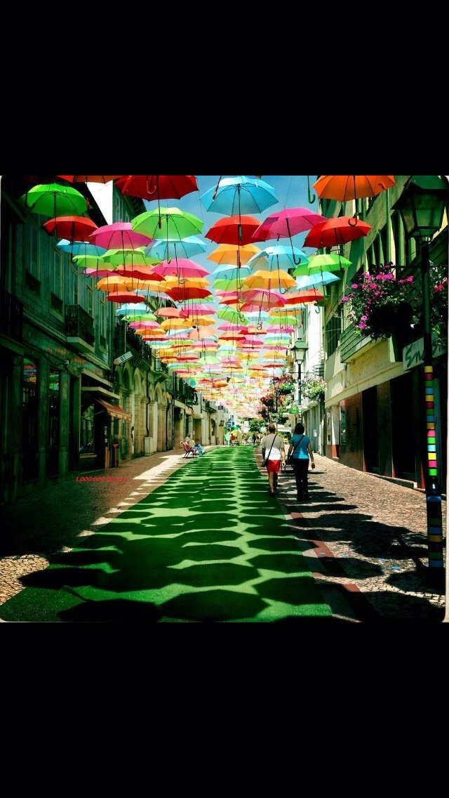 Agueda, a city in Portugal, decorated the streets with colorful umbrellas. Life is so colorful.