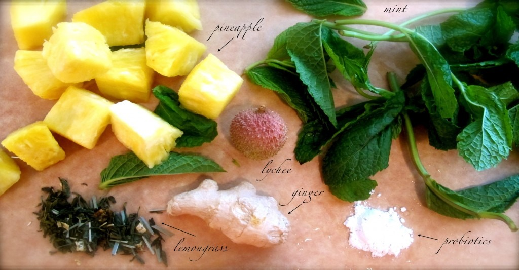 Ingredients: 1 Cup Pineapple (sliced or cubed) 5-7 Sprigs Fresh Mint 3″ Ginger (sliced or cubed) 2-4 Lychees (pitted, sliced) 1″ Fresh or 1 Tbsp Dried Lemongrass 1g Scoop Probiotics, or 1 Tbsp Kefir (optional) Pinch Himalayan Crystal Salt 750ml – 1 litre Filtered Alkaline Water (or Purified water