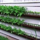1. DIY Vertical Garden with Reclaimed Gutters