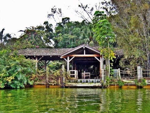 There are several abandoned areas of Disney Land. A former wildlife attraction in the heart of Disney World, it is rumoured that Discovery Island was left to run wild after bacteria capable of harming humans was discovered in the surrounding water.