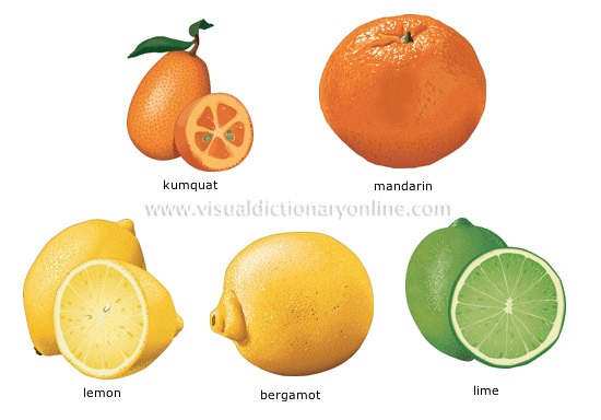 Citrus is good for skin care, mix 1 teaspoon of lemon juice with 1 teaspoon of glycerin, apply and leave for overnight.