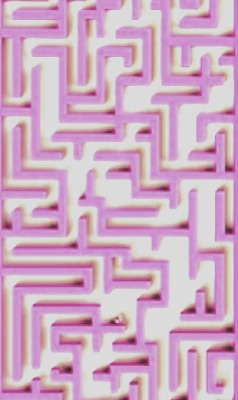 To get through a maze , always follow the right wall as soon as you enter the maze. I guarantee this will lead you to the end EVERY time. Trust me I've tried it heaps 👌🌸