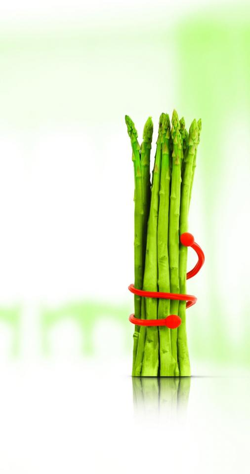 Siliconezone Silly Food Twist Ties -->>http://homegadgetsdaily.com/siliconezone-silly-food-twist-ties/