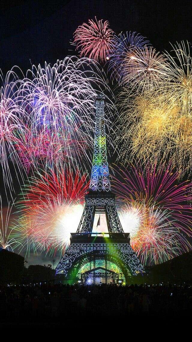 NEW YEAR IN PARIS FIREWORKS 2014