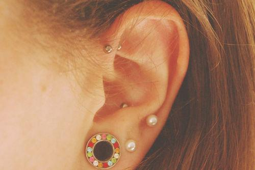 ear stretcher/ gauge, upper lobe, forward helix and outer conch piercings