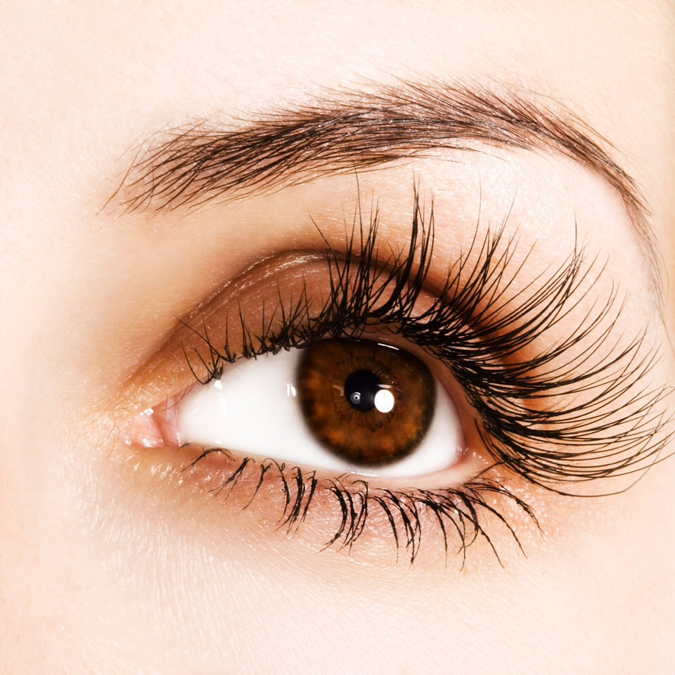Want to know how to keep eyebrows in place without gel? Read next page.