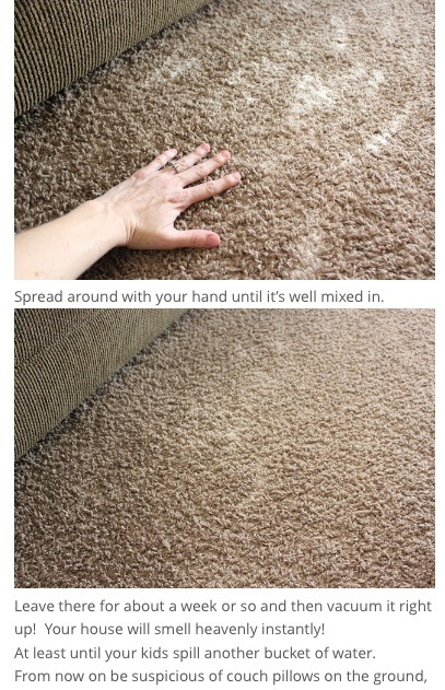 I leave it on my carpets for 30 min to an hour
