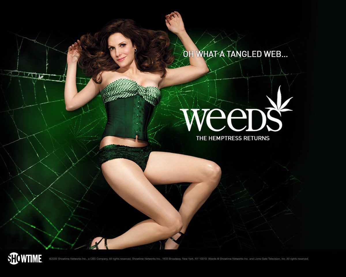 Weeds is also one of my favorite tv shows. It's about a woman who starts selling marijuana in order to keep her family's lifestyle the same, all because her husband died. She goes through along journey and a lot of shocking surprises.