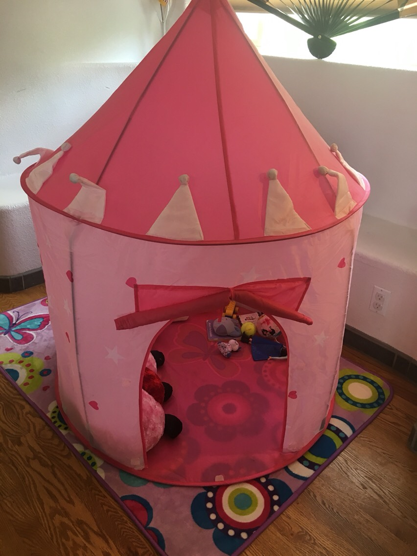 Can't go wrong with a princess tent (there's some for boys to)!!! I found this one on Amazon.