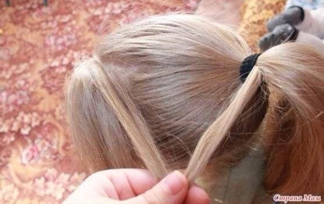 Take a small piece from each ponytail in equal size