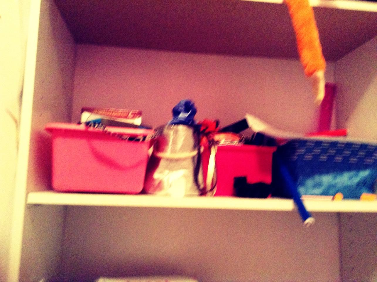 Fun bins for shelving storage