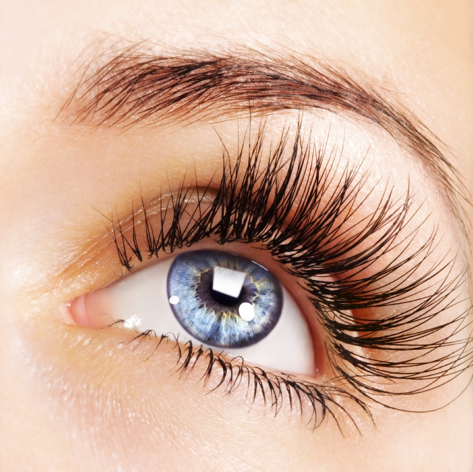 At night put a thick layer of vaseline on your lashes and let it stay there overnight