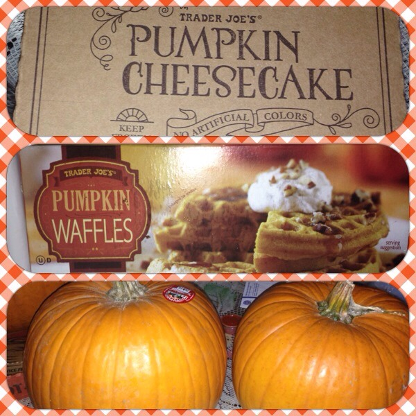 Went to trader joes and this pumpkin cheesecake & pumpkin waffles is amazing!