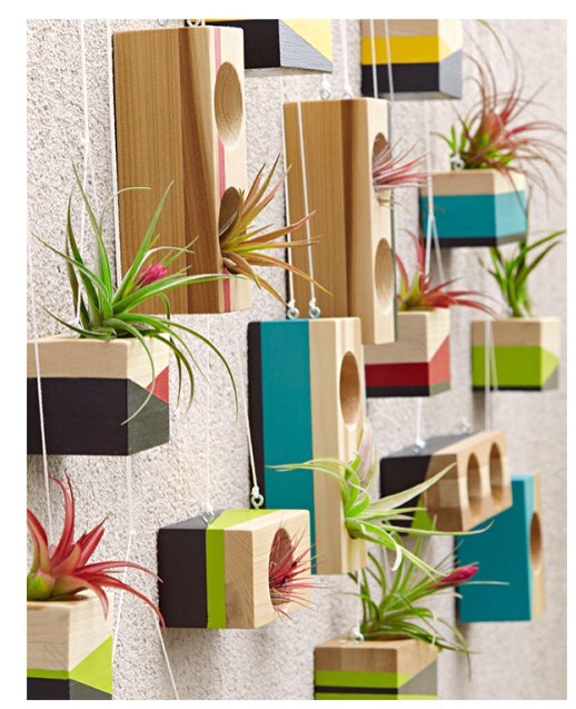 Building Blocks Make a wall wow with these painted planter blocks. Built from poplar with drilled holes for air plants (which require no soil), they form a customizable art display you can hang inside or out.