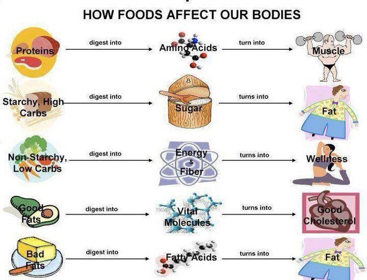 how processed food products affect our environment Since the standard american diet (sad) consists largely of processed, factory-farmed foods that are loaded with various derivatives of soy, corn, canola, cottonseed, and wheat, americans as a whole are also contributing, albeit indirectly, to the devastating consequences of cash crop plantations.