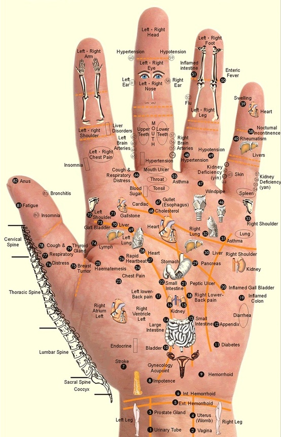 hand acupuncture that helps every part of your body ♥♡