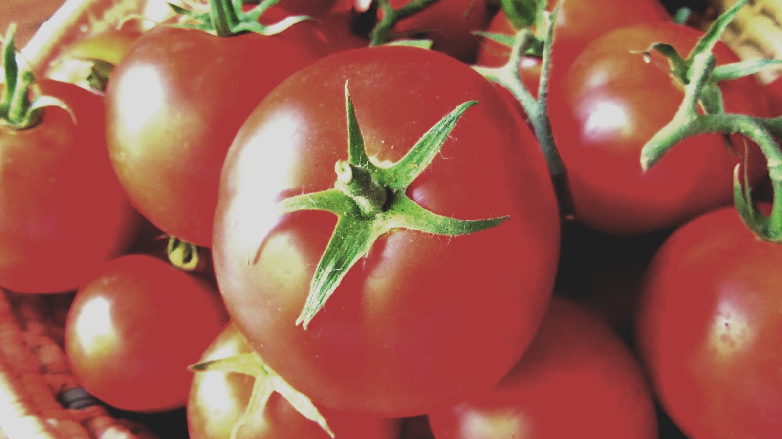 There's no question that sunscreen should be your first line of defense against the blazing summer sun. But eating tomatoes could give you a little extra protection: consuming more lycopene—the carotenoid that makes tomatoes red—may protect your skin from sunburn.