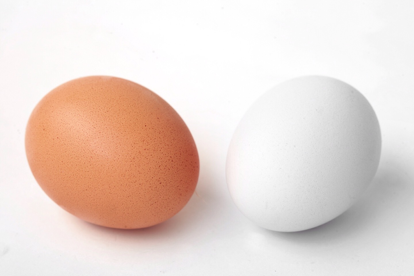 You can use white or brown eggs.Your egg color choice!