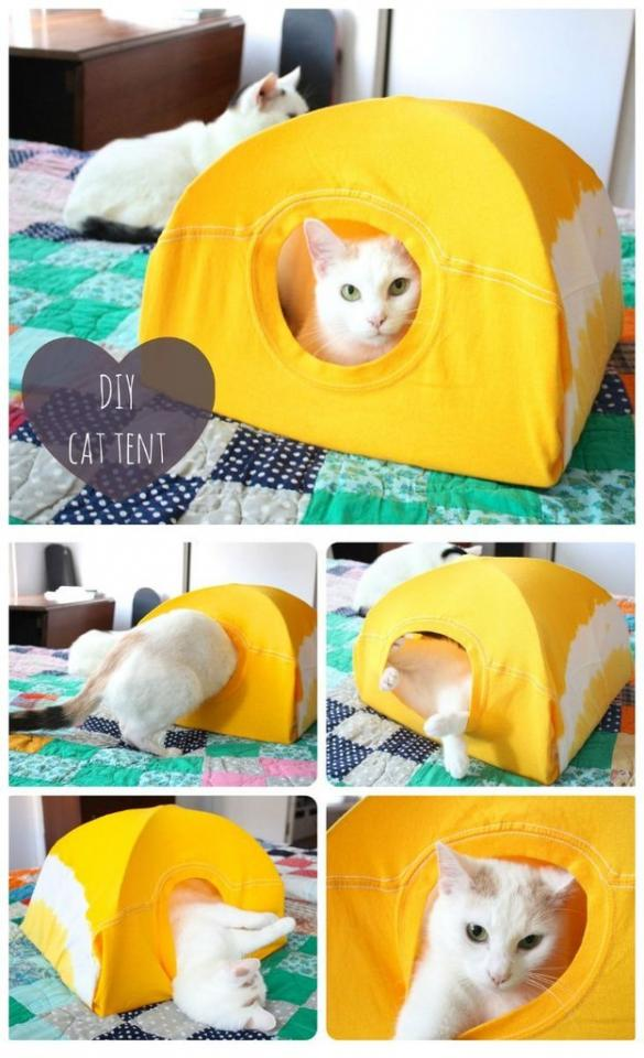 6. Make a cat tent out of a T-shirt and two hangers. Finally, a use for that old bat mitzvah T-shirt that's 10 sizes too large. Get the directions here.http://www.instructables.com/id/DIY-cat-tent/