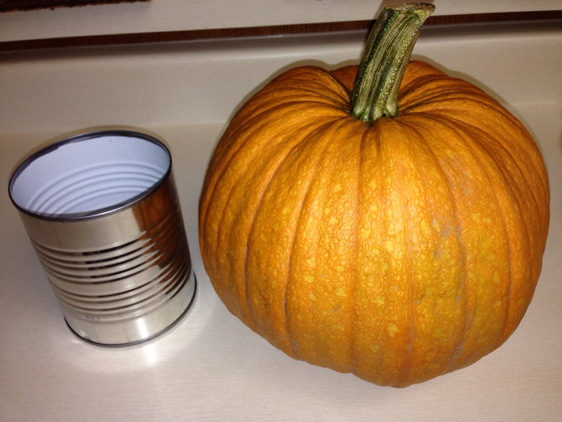 Depending on the size of your pumpkin, get a can that will fit in nicely !