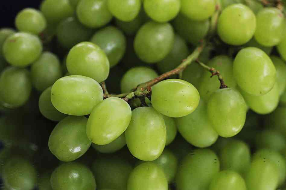 Grapes - contain disease preventing compounds, lowers risk of cardiovascular disease, helps strengthen antioxidant substances, reduce risk of heart disease