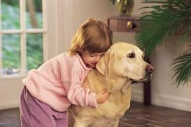 Dogs don't enjoy being hugged as     much as humans and other        primates.👐