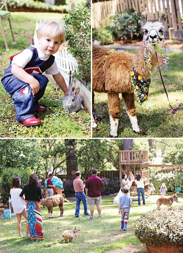 Petting zoo party !!! Everyone will love spending time with the cute animals:)
