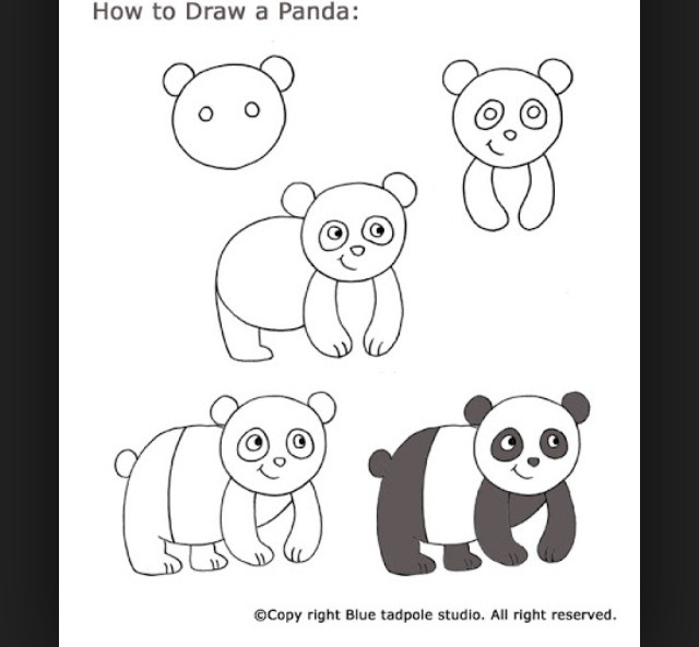 How To Draw Animals For Beginners by Hailey Shaw - Musely Drawing Ideas For Beginners Kids
