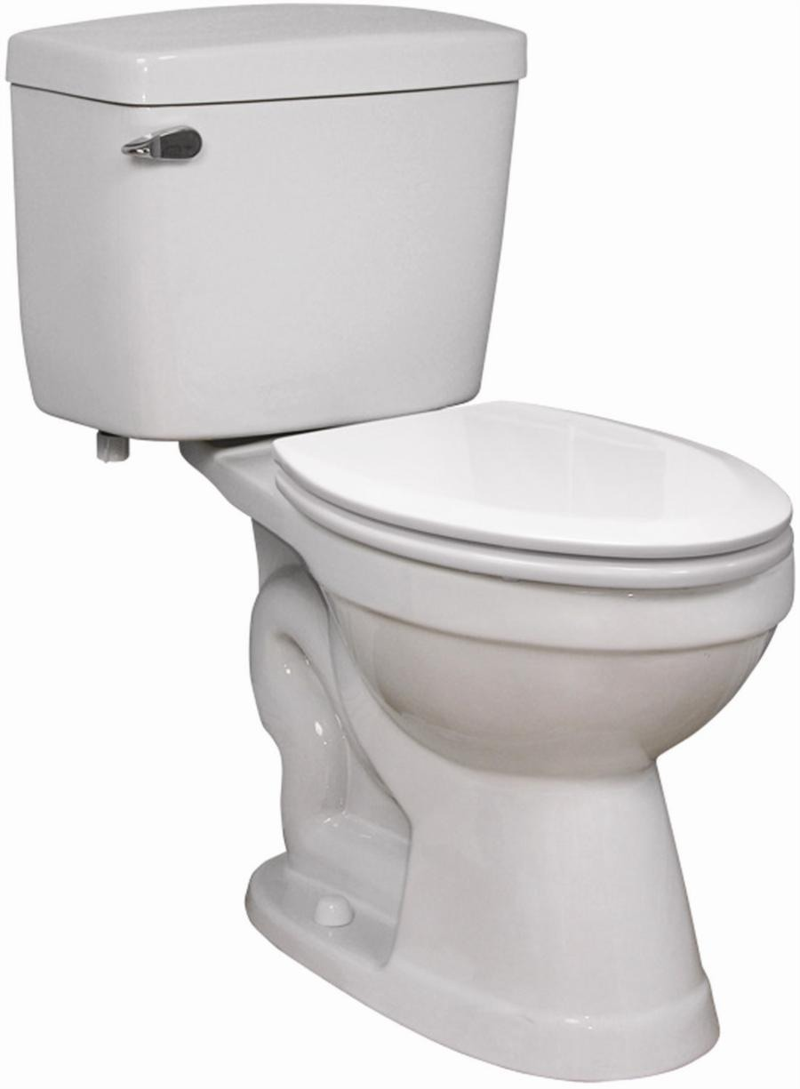 drop some in the toilet and let them do their thing