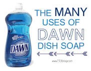 Dawns soap is excellent to kill stubborn fleas! Wash your doggie and watch them fall off dead.
