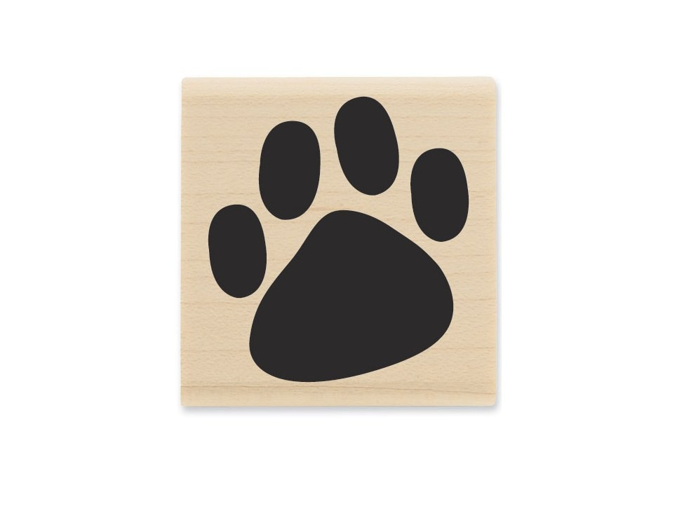 17: send them a birthday card from a pet or a relatives pet. It is always a surprise to see something from Rover. (If it's from a cat or dog, use a paw stamp to sign it)  18: have a treasure hunt. Let the birthday child read each clue or lead the pack. Or both depending on their age.