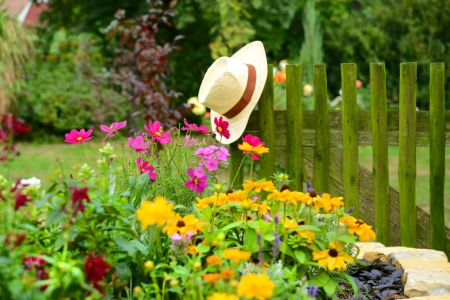Plan your garden for next summer. These will be a sure hit with family and friends.