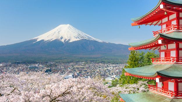 2. Japan WHY GO IN 2016: For starters, the government is trying to devalue the Japanese yen, which means that the country is more affordable than ever right now. Also, the 2020 Summer Olympics are being held in Tokyo and, even though that seems far away