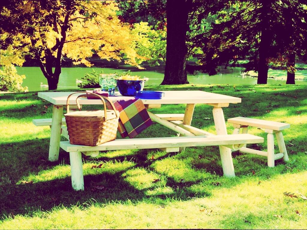 have a picnic! find a group of friends or even your boyfriend or girlfriend and have a picnic with your favorite foods or trying out new foods you've never tried!