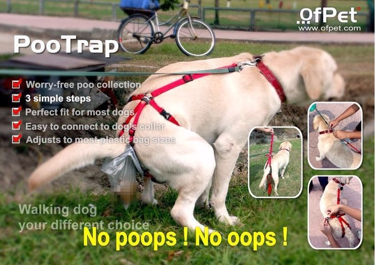 """32.PooTrap This handy device can help you to clean up after your do. The """"Poo Trap"""" is a plastic bag that sits on your dog's behind and catches the poo """"as it happens"""". $38.00"""