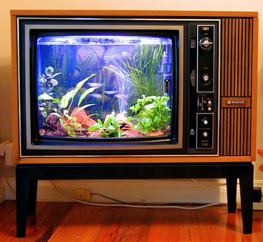 Look again. At second glance you'll see that this antique television has been transformed into a fish tank!
