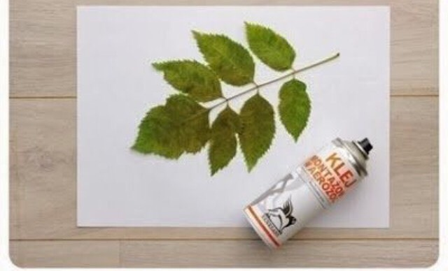 Try placing leafs different ways on the canvas to see what you like