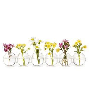 http://www.uncommongoods.com/product/caterpillar-bud-vase