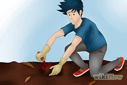 3)Dig a hole. With a gardening shovel, dig a hole about as round as a tea cup saucer.