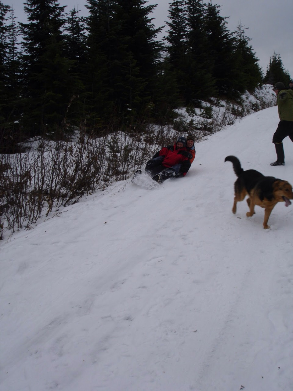 6.) chase your dog! Play with him/her in the snow!