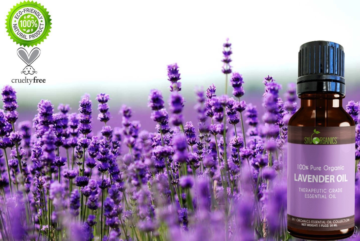 Lavender essential oil cats
