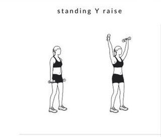 10 STANDING Y RAISE Our body adapts to stress quickly,so it's important that we keep challenging our muscles with different exercises,like the Y raise,and that we push hard.Keep your workouts fun and interesting by adding modified versions of these exercises,changingThe number ofSteps,reps andChangi