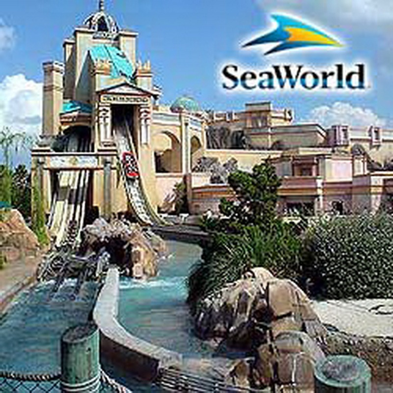 Seaworld is cool too, fun rides, good food, awesome shows and being able to look at some amazing animals