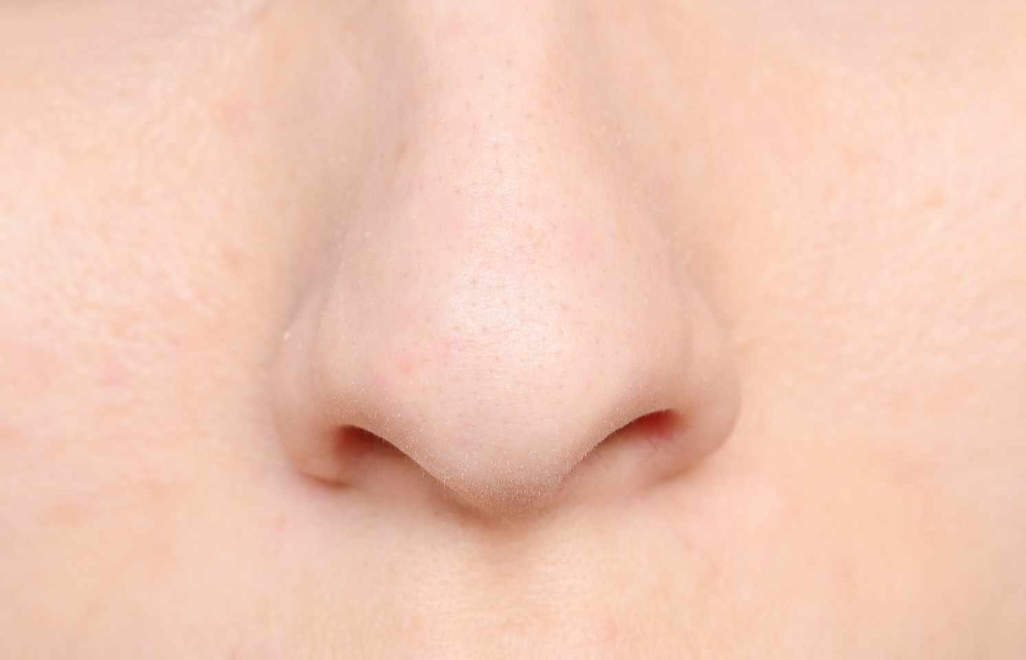 8. Put Vaseline on your nose everyday to make it soft and smooth for the winter.