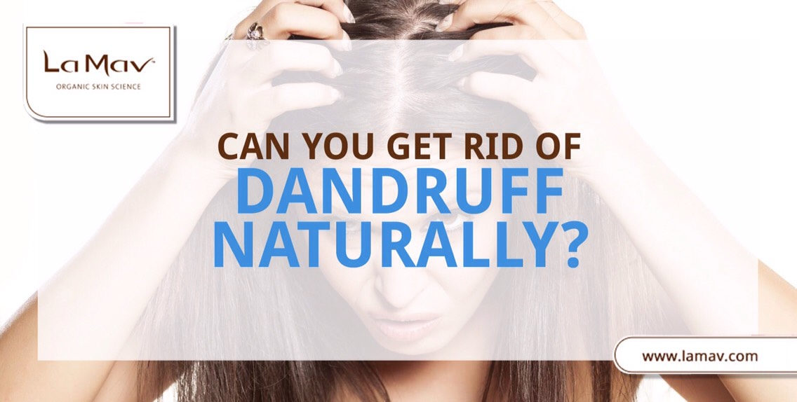 Everasked yourself what might be the cause of persistent itching + scaling of your scalp?Dandruff mostly occurs due to dryness of the scalp, excessive oil production, or an overgrowth of a fungus called Malassezia.
