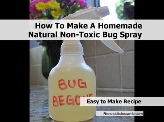 http://www.deliciouswife.com/2012/04/bug-be-gone-homemade-all-natural-and.html