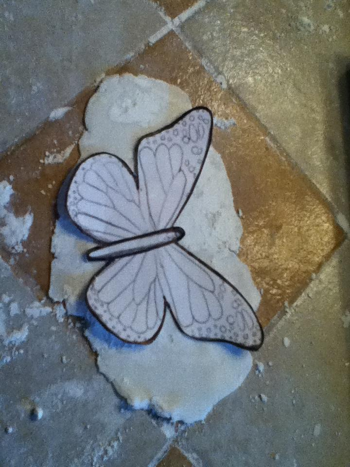 i used fondant to make my butterflies