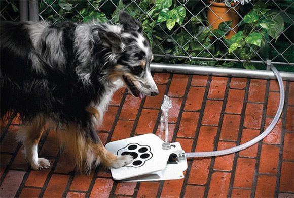 28.API Doggie Fountain F-1 Provide a continuous flow of drinking water to your dog even when you are busy with the help of the API Doggie Fountain F-1. $69.99