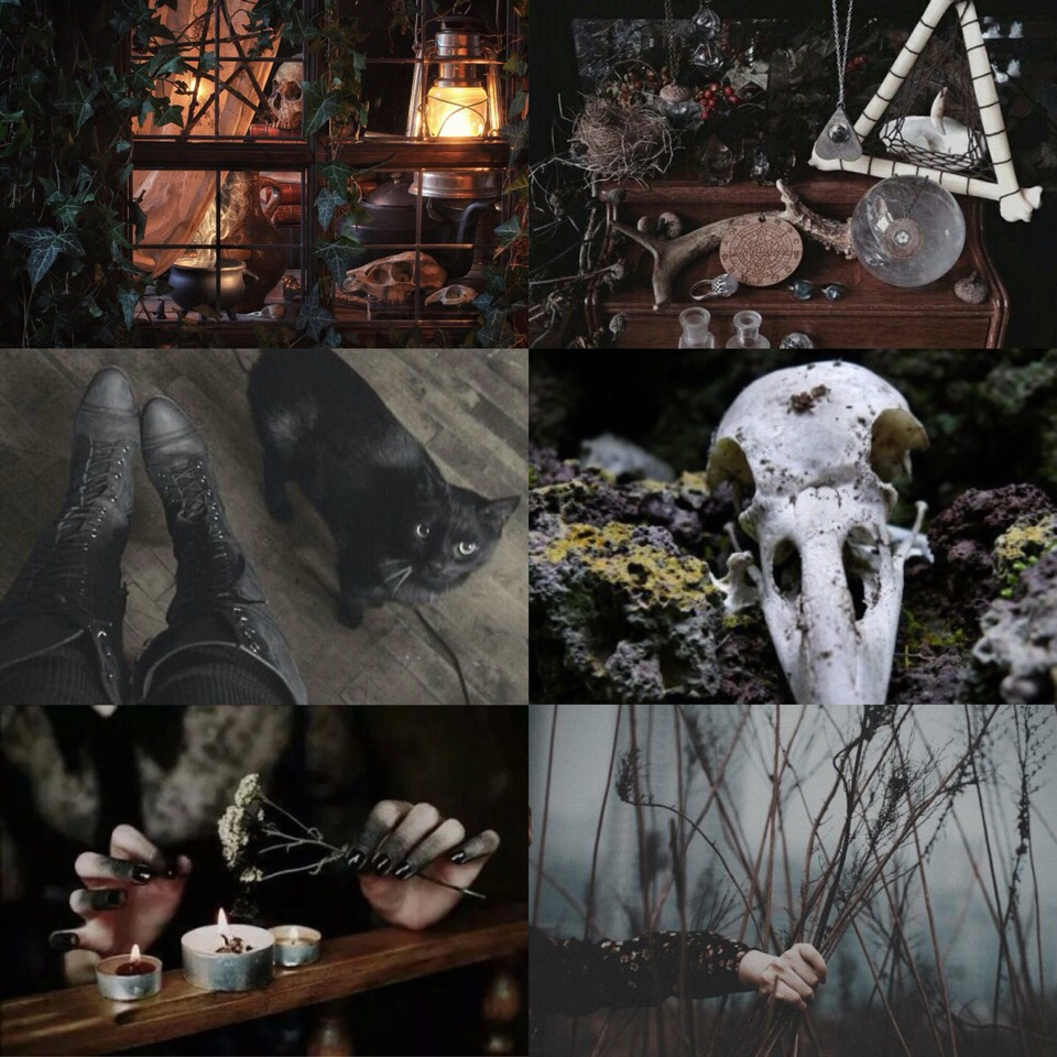 ♑️ Earth Witch Aesthetic // Capricorn ♑️